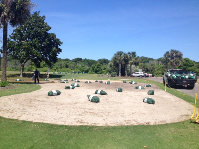 Champion Bermuda Renovation Fernandina Beach Golf Club