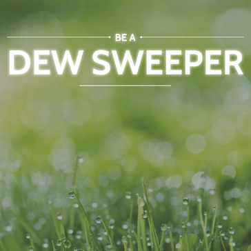 Dew Sweeper Special, Early Bird,