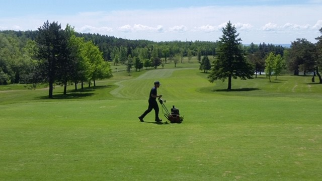 Mowing the greens with trees in the background at Enger Park Golf Course