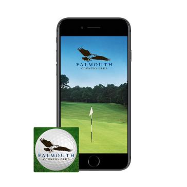 Falmouth App web Phone icon