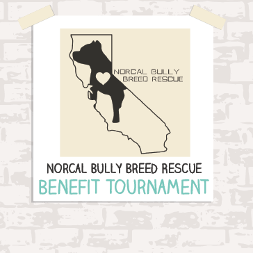 2015 NORCAL Bully Breed Rescue - Benefit Tournament