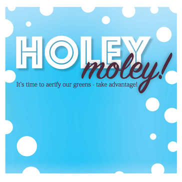 Holey Moley -golf Aerification Web banner