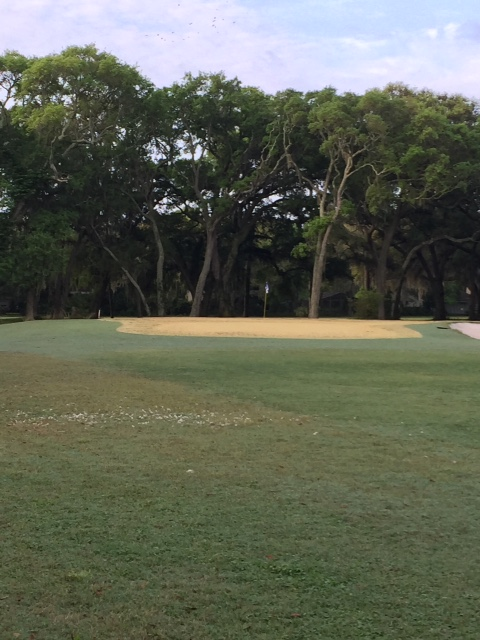 West Course green following round up application in Fernandina Beach Golf Club