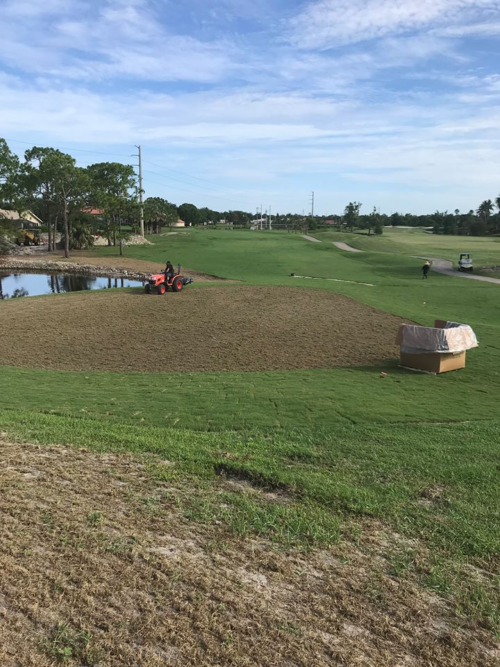 Springs being laid on greens
