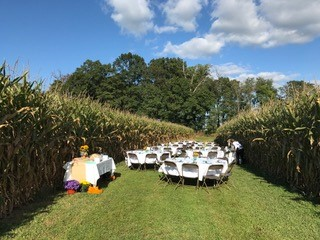 Cornfield Table Setting