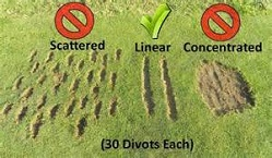 Range Divot Pattern