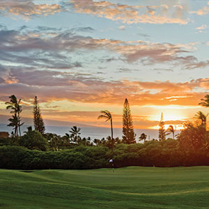 Ka'anapali Royal Course: Case Study