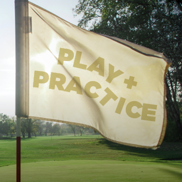 Play + Practice at FPG