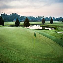 The Island Golf & Country Club