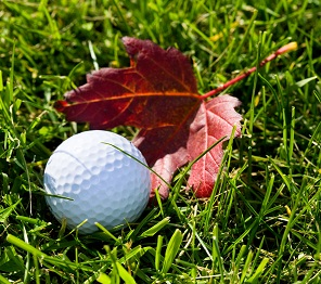 Fall Leaf with Golf Ball