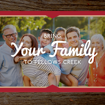 Family Reunion at Fellows Creek