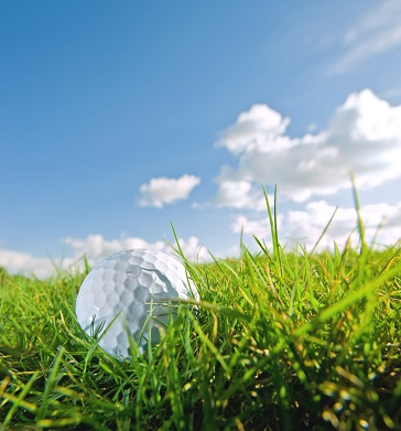 Golf Ball in Grass on Sunny Day at Billy Casper Golf Course