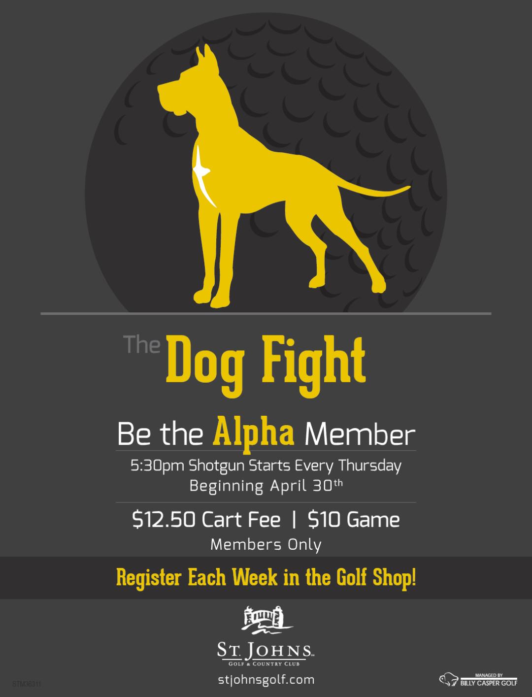 Dogfight 2015