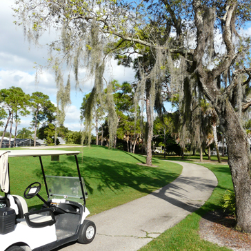 Spanish Wells Golf Country Club nature golf course, golf carts, outings