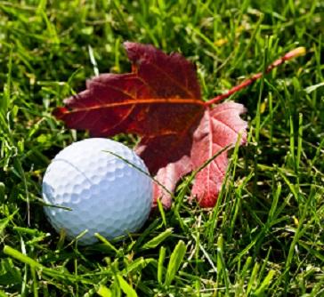 Fall Leaf with Golf Ball