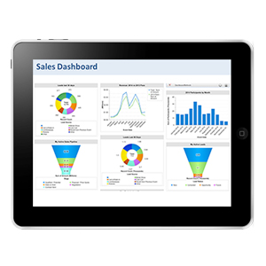 BCG's National Sales Team Dashboard