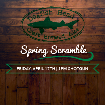Dogfish Head Spring