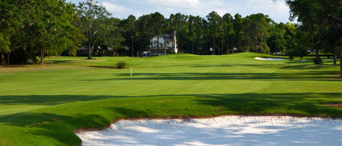 Image result for dubsdread golf college park