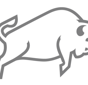 BCG Logo 600
