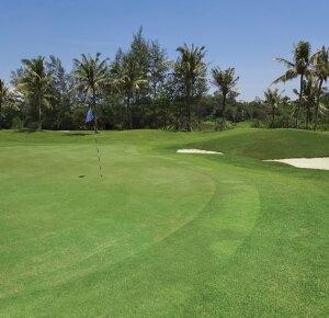 Florida Golf Course Green Shot