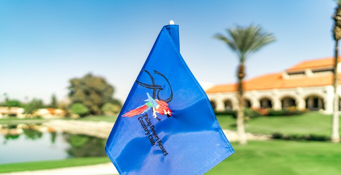 Palm Desert Flag