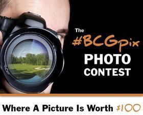 BCGpix Contest