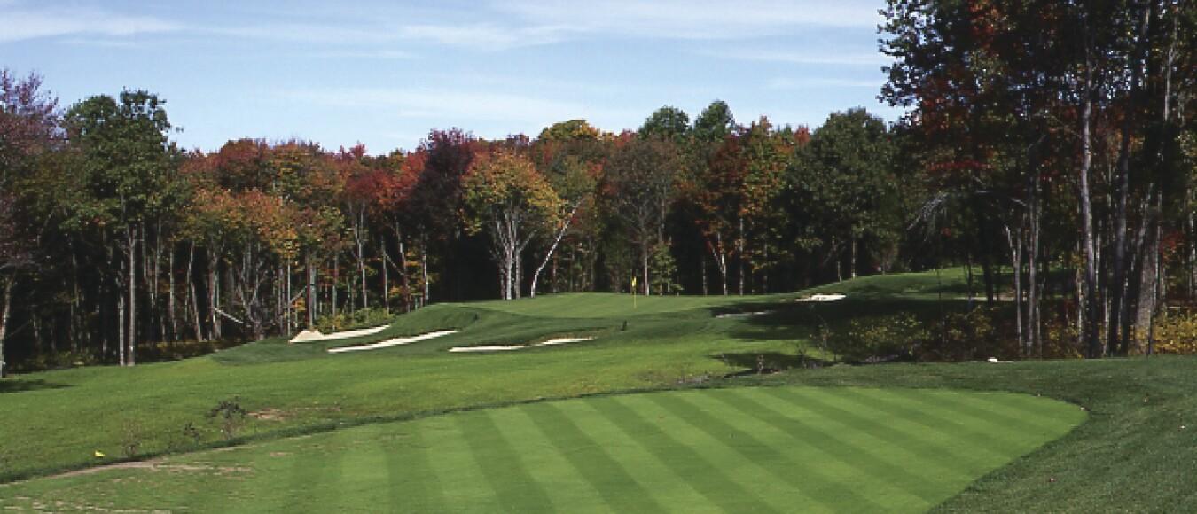 Green Golf the golf club at oxford greens: golf