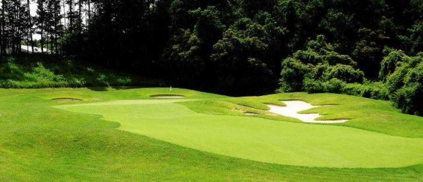 Green Golf forest greens golf club - triangle, va - managedbilly casper golf