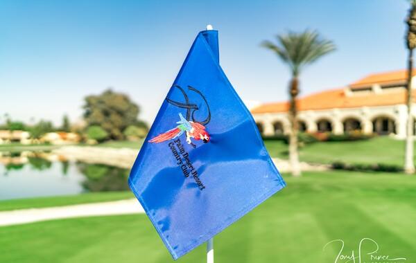 Palm Desert Flag
