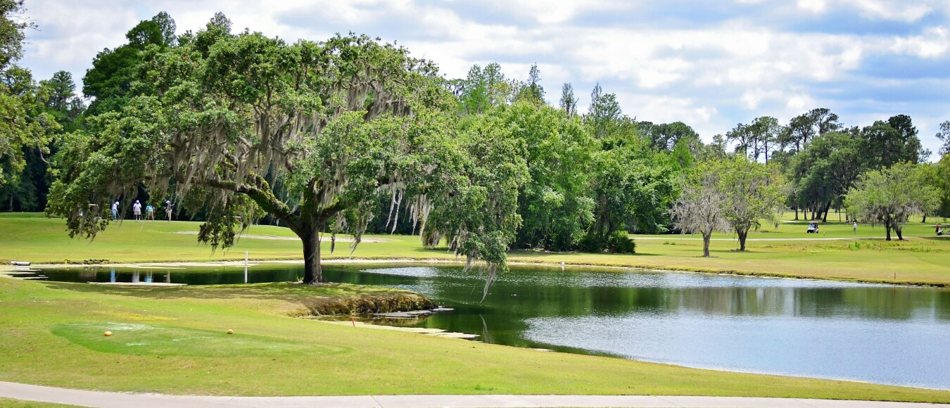 The Claw at USF Golf Courses   Tampa, Florida