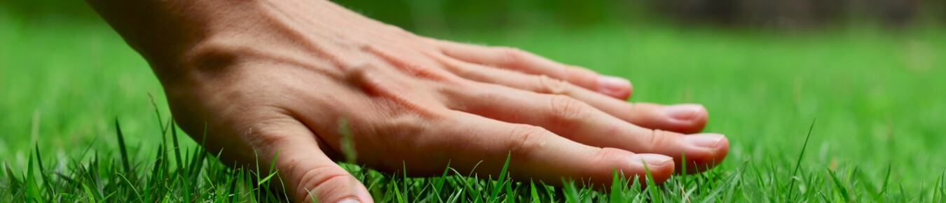Hand and Grass
